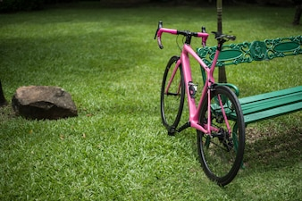 Pink bike leaning on park bench