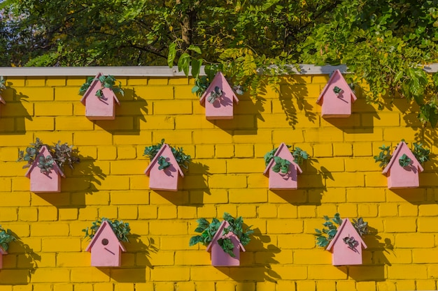 Pink birdhouses on the yellow wall
