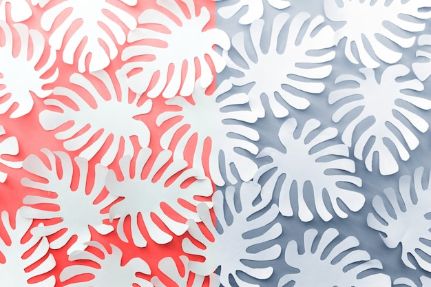 Pink blue white background with paper tropical botanical flora leaves