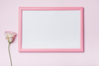 Pink border white picture frame with eustoma flower against background