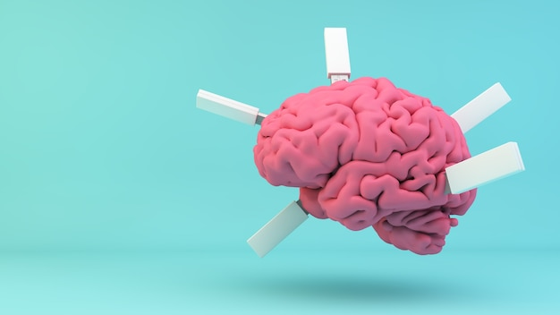 Pink brain with plugged usb on blue background 3d rendering concept