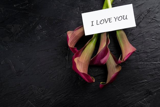 검은 바탕에 핑크 칼라 릴리 꽃입니다.