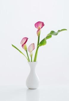 흰색 표면에 꽃병에 핑크 칼라 백합 프리미엄 사진