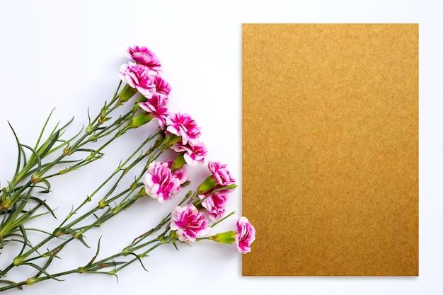 白い表面に紙とピンクのカーネーションの花