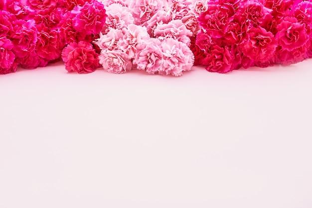 Pink carnation flowers border on pink background. mothers day, valentines day, birthday celebration