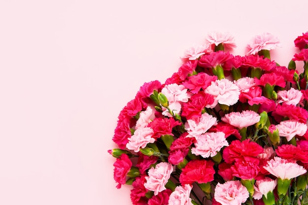Букет розовых гвоздик на розовом фоне.