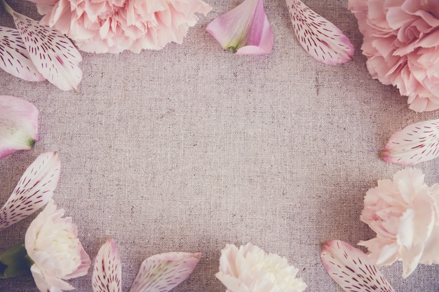 Pink carnation flowers copy space linen