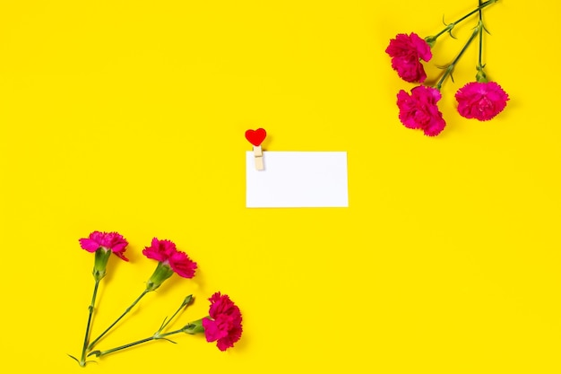Pink carnation flowers with blank greeting card on yellow background.