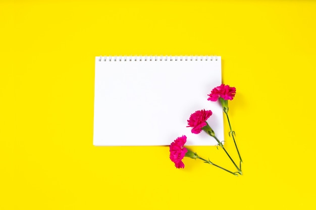 Pink carnation flowers with open notebook