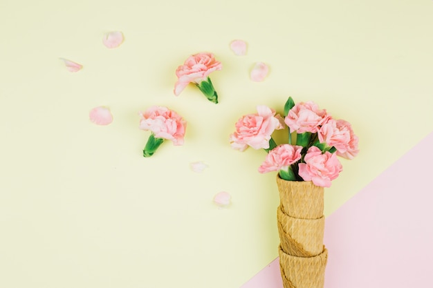 Pink carnations flowers in the waffle cones on pink and yellow dual backdrop