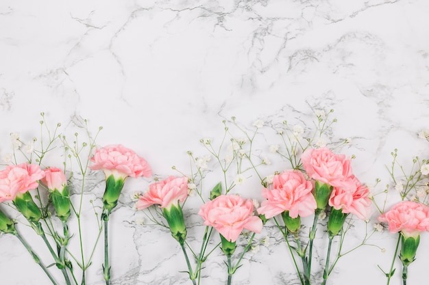 Pink carnations and gypsophila flowers on marble textured background