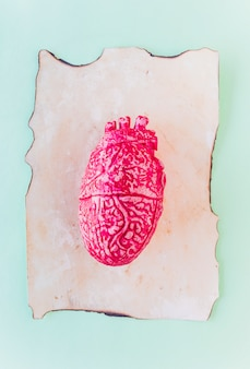 Pink ceramic human heart on old paper