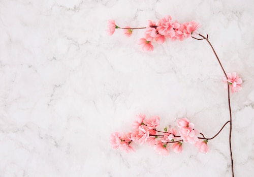 Pink cherry blossom over the marble textured background