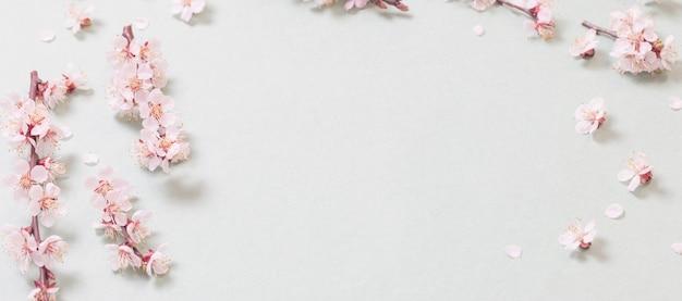 紙の表面にピンクの桜の花