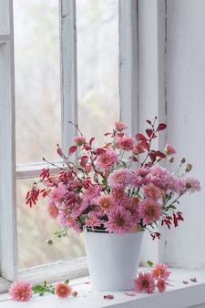 Pink chrysanthemums on white windowsill