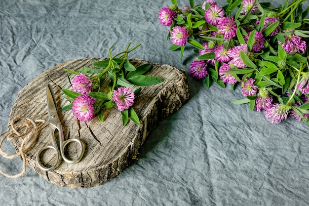 Pink clover flowers and scissors on old wooden stump