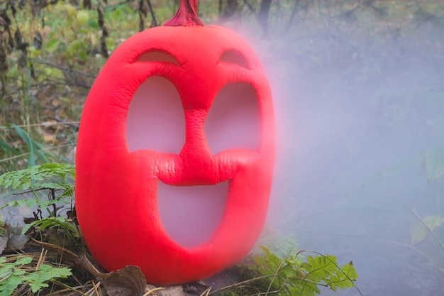 Pink colored halloween pumpkin in autumn forest on an old stump jack lantern with vapor from mouth