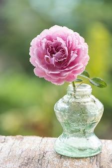 自然の表面のガラス瓶にピンクのダマスクローズの花。