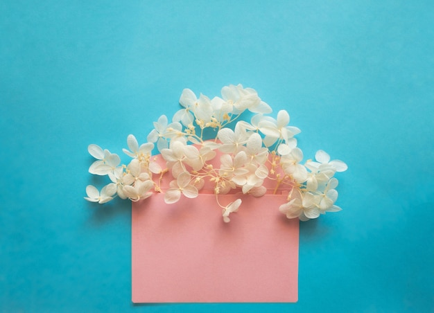 Розовый конверт с белыми цветами гортензии внутри на синем фоне. шаблон для информационных бюллетеней и других почтовых оформлений.