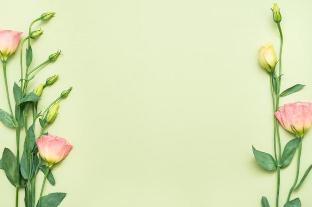 ピンクのトルコギキョウの花の境界線。花のコンセプト。緑の背景にスペースをコピーします。フラットレイ。