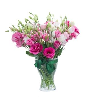 Розовые цветы эустомы в вазе изолированные