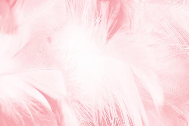 ピンクの羽の抽象的な背景