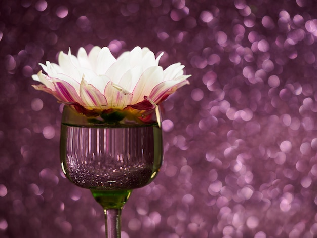 Pink flower in a glass on a sparkling pink background with bokeh, copyspace
