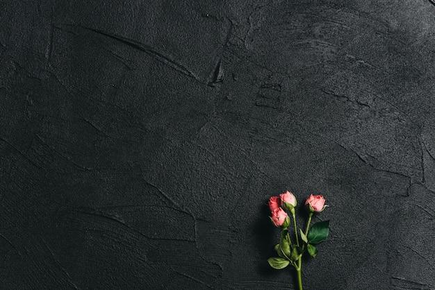 Розовый цветок на фоне темного цемента