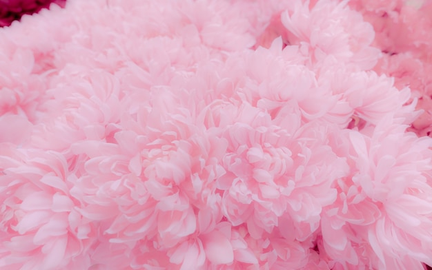 Pink flower texture background. soft and pastel color petals of pink flower bouquet.