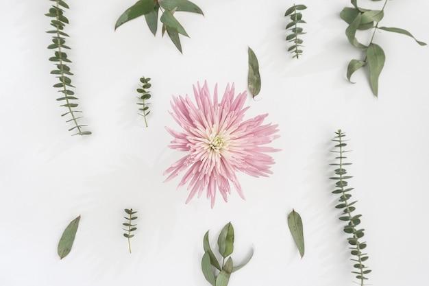 Розовый цветок с зелеными растениями
