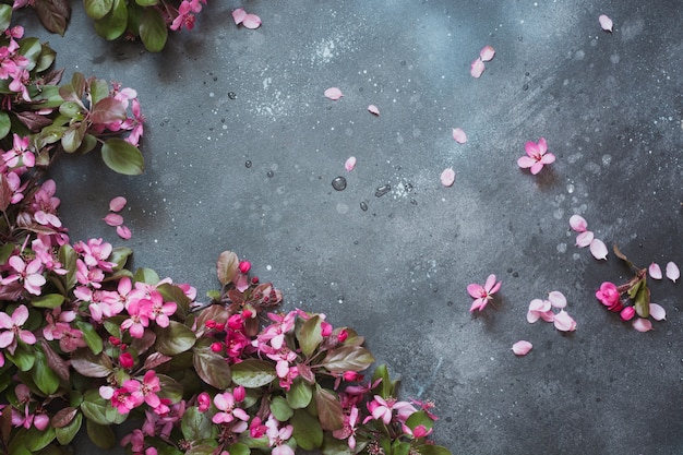 Pink flowers of blossoming fruit tree on vintage table.
