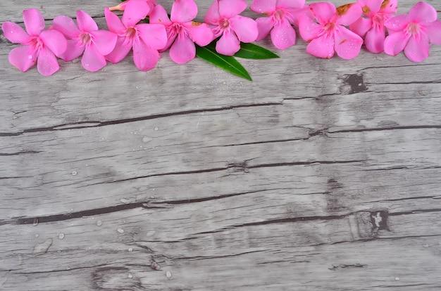 Розовые цветы граничат с деревянным узором