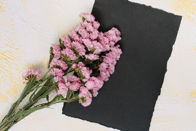 Pink flowers branches with black paper on table