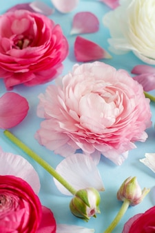 Pink flowers on a light blue background copy space,