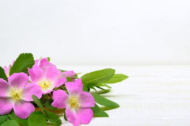 Розовые цветы шиповника на белом деревянном столе