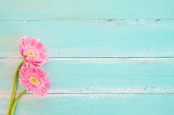 Pink flowers on vintage wooden in blue paint background