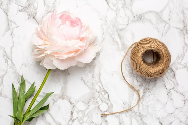 Pink flowers peony and twine on a marble surface. holiday and summer item.