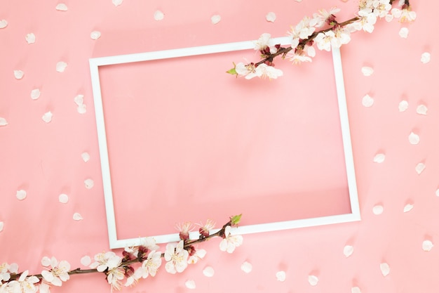 Pink flowers, photo frame on pink background