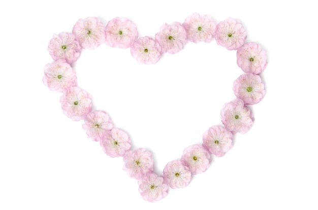 Pink flowers in  shape of heart on white surface