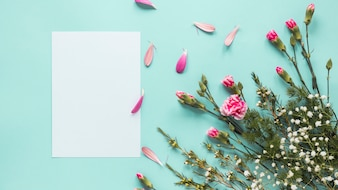 Розовые цветы с чистого листа на синем столе