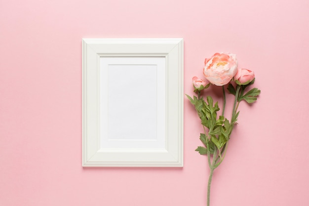 Pink flowers with frame
