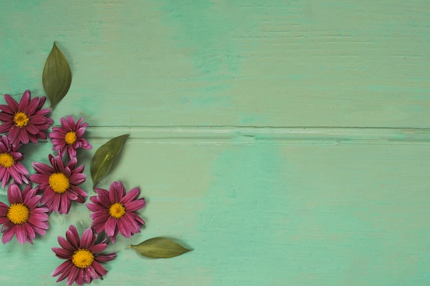 Pink flowers with leaves on green table