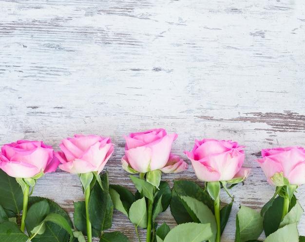 Pink fresh roses border on white wooden