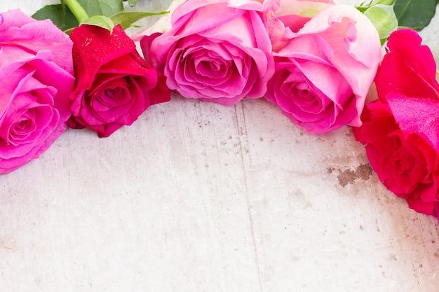 Pink fresh roses border on white