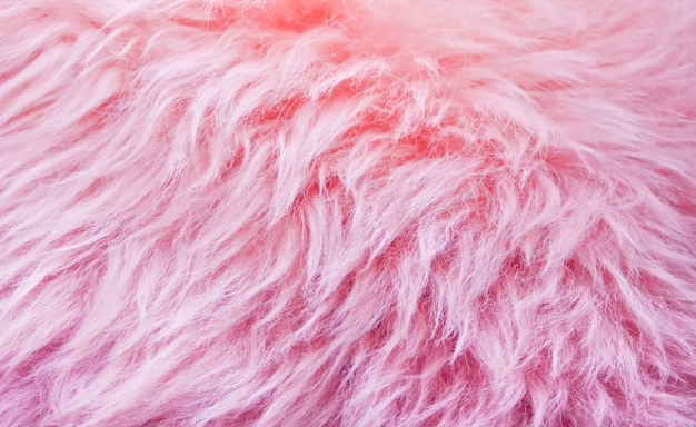 Pink fur background texture, animal wool texture, nature wool fluffy
