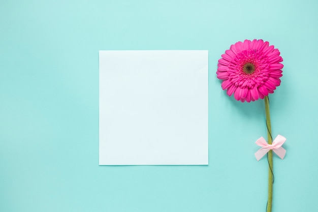 Pink gerbera flower with blank paper on table