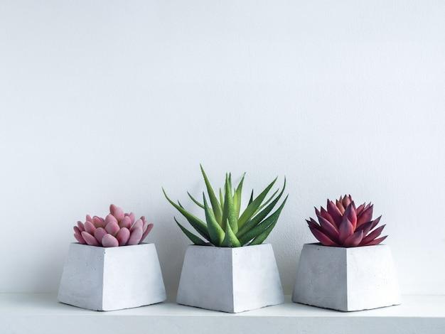 白地に白い木製の棚にモダンな幾何学的なセメントプランターでピンク、緑、赤の多肉植物