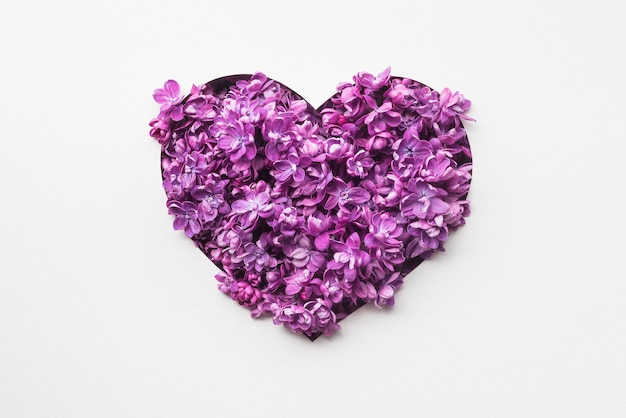 Розовое сердце из сиреневых цветов на белом фоне
