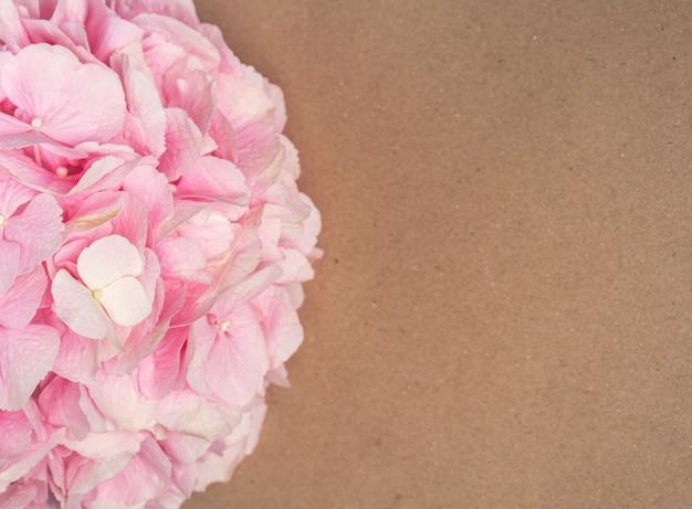 Pink hydrangea flower on a craft paper
