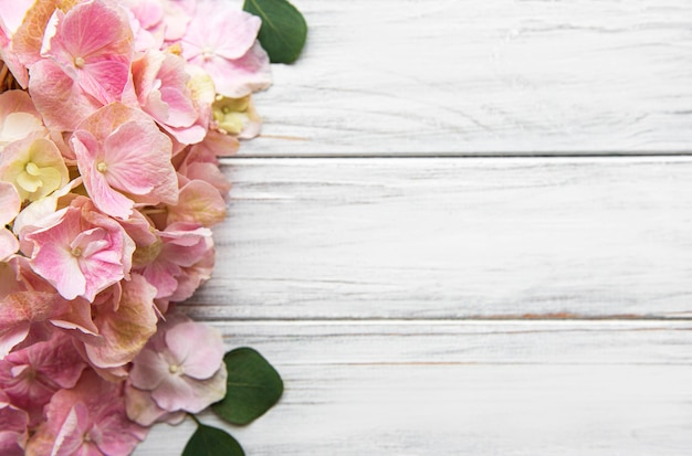 Pink hydrangea flowers on white wooden background. floral border with copy space. top view.